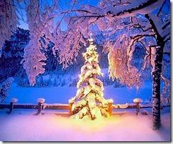 christmas_by_Abakum