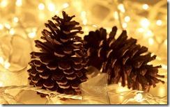 Pine cones amongst fairy lights